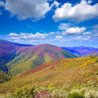 O caminho de saint james em leon montanhas rosa