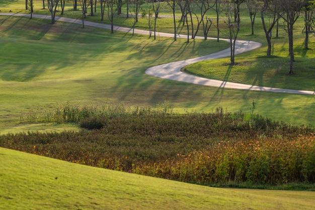 O caminho e as árvores bonitas seguem para a corrida ou o passeio e o ciclismo relaxam no parque.