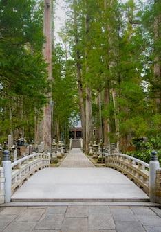 O caminho em okunoin graveyard kayasan, wakayama japan