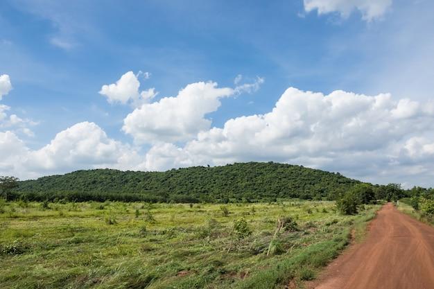 O caminho para a floresta e as montanhas em um lindo dia