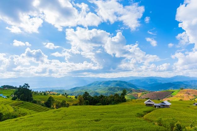 O campo dourado terraced do arroz com céu.