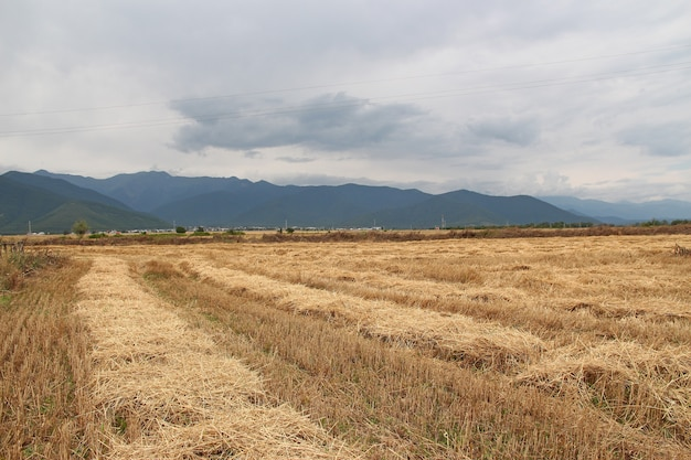 O campo nas montanhas do cáucaso, azerbaijão