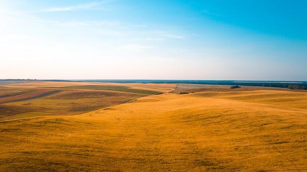 O campo verde é no tiro do sol com o drone