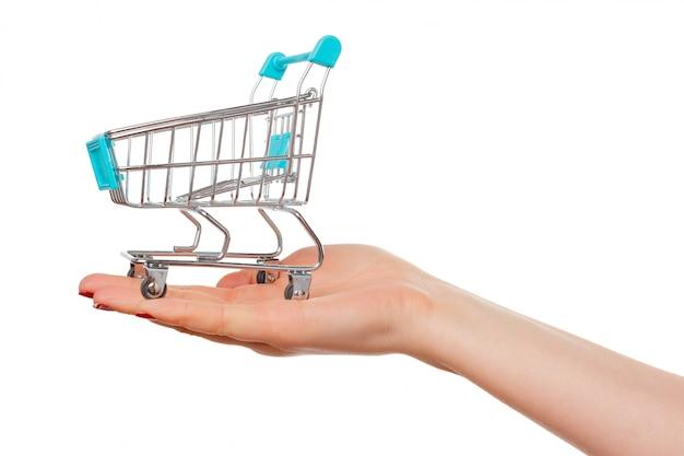 O carrinho de compras nas mãos femininas isoladas
