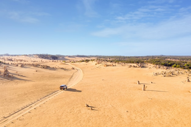 O carro da movimentação de quatro rodas em pináculos conduz, estrada de terra no deserto dos pináculos, austrália ocidental.