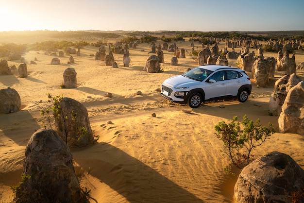 O carro de quatro rodas na movimentação dos pináculos, estrada de terra nos pináculos abandona, parque nacional de nambung, austrália ocidental, austrália.