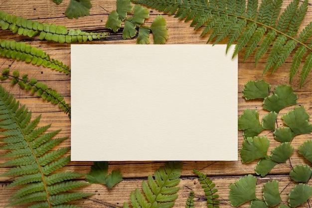 O cartão de papel em branco sobre uma mesa de madeira decorada com samambaia deixa vista superior. cena tropical de maquete com cartão de convite plano