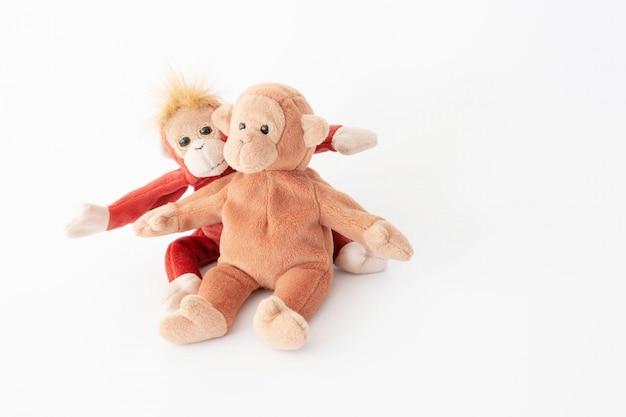 O casal amoroso feliz, melhores amigos estão abraçando e adoráveis macacos em modo de amor no dia dos namorados