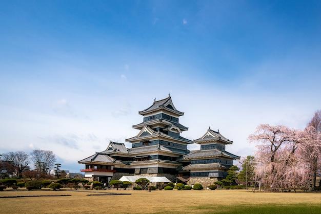 O castelo de matsumoto durante a flor de cerejeira é um dos pontos turísticos mais famosos de matsumoto, nagano, japão.