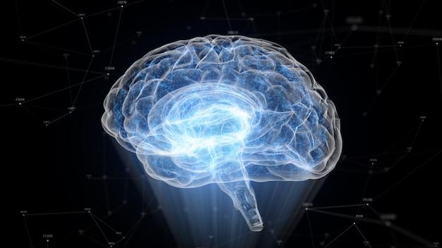O cérebro humano formado de partículas luminosas