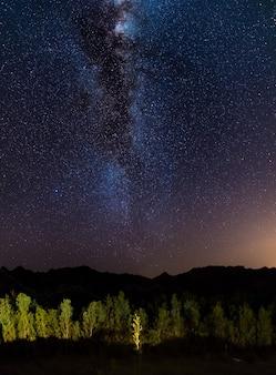 O céu estrelado e a via láctea arqueiam, capturado dos oásis verdes no deserto de namib, namíbia, áfrica.
