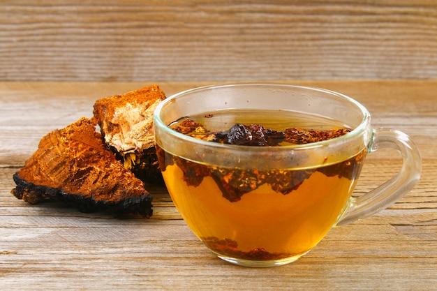 O chá curativo do chaga de cogumelo de vidoeiro é usado na medicina popular.