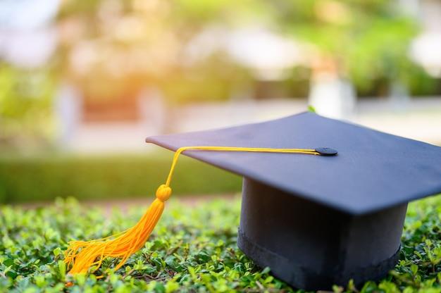 O chapéu preto de graduados universitários é colocado em folhas verdes.