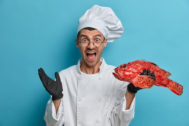 O chef furioso grita alto, mantém a boca aberta, usa uniforme de cozinheiro, segura peixes grandes, dá aula de culinária deliciosa, conta a receita perfeita