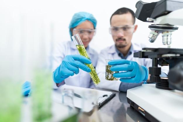 O cientista testa o extrato de produto natural, óleo e solução de biocombustível, no laboratório de química.