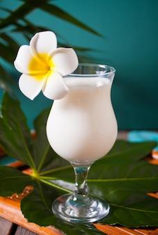 O cocktail tropical exótico do cararibe tradicional bebe pina colada em uns vidros com a flor do frangipani do plumeria, folha de palmeira no fundo.