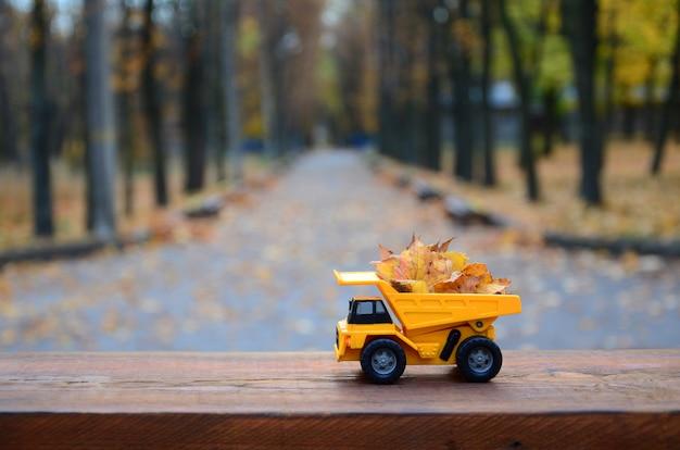 O conceito de colheita sazonal de folhas caídas de outono