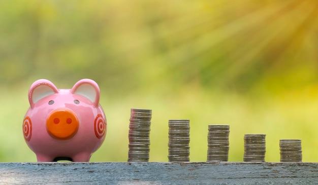 O conceito de poupar dinheiro, cofrinho e moedas sobre fundo jardim turva