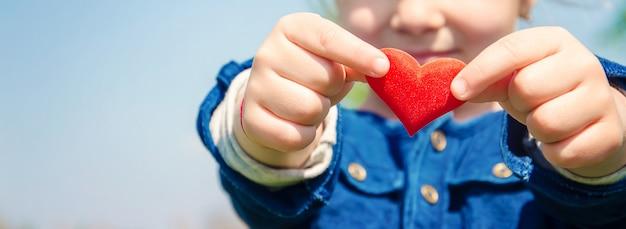 O coração está nas mãos da criança. foco seletivo.