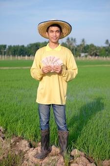 O corpo inteiro de um agricultor asiático usa uma camisa amarela em pé e segurando o dinheiro das notas tailandesas em uma fazenda de arroz verde