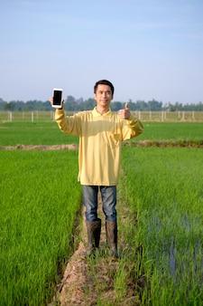 O corpo inteiro de um agricultor asiático usa uma camisa amarela segurando um smartphone e o polegar para cima em uma fazenda de arroz verde