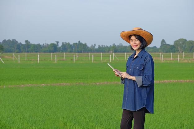 O corpo inteiro de uma agricultora asiática em pé segurando um tablet em uma fazenda de arroz verde