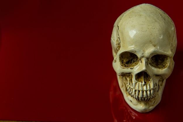 O crânio na imagem abstrata lustrosa do fundo vermelho.