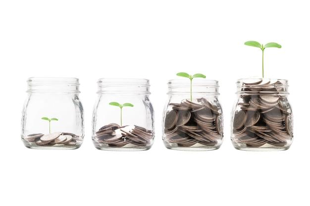 O crescimento crescente inventa o dinheiro dentro do frasco de economia de porquinho transparente com a planta.