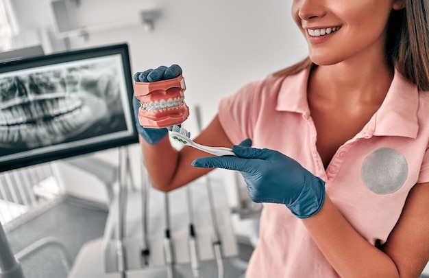 O dentista mostra como escovar os dentes com uma escova de dentes no layout da mandíbula. mãos do médico em luvas no trabalho. modelo de dentes para demonstração.