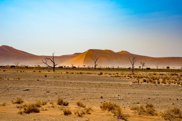 O deserto do namibe, no maravilhoso parque nacional namib naukluft