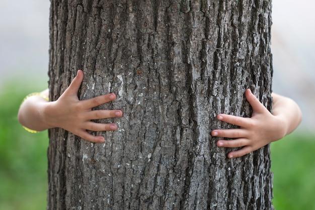 O detalhe do close-up isolou o tronco de árvore forte grande crescente abraçado de trás pelas mãos pequenas da criança.