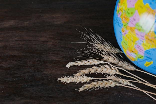 O dia mundial da alimentação, grãos de arroz e grãos de arroz descansando no chão de madeira marrom e globos simulados um ao lado do outro.