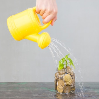 O dispensador de água está regando a árvore do dinheiro. conceito de investimentos lucrativos em dinheiro.