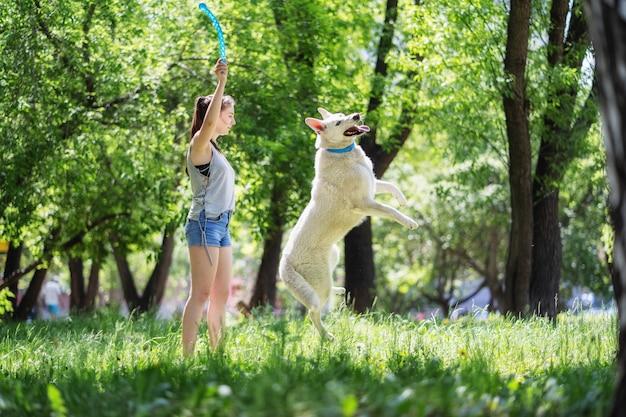 O dono brinca com um cachorro branco no parque cachorro feliz pula na grama e tenta pegar o brinquedo