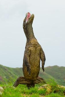O dragão de komodo está de pé nas patas traseiras.