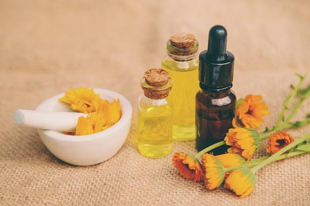 O extrato de calêndula. plantas medicinais.