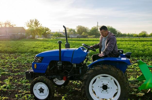O fazendeiro trabalha no campo com um trator colhendo batatas colhendo as primeiras batatas