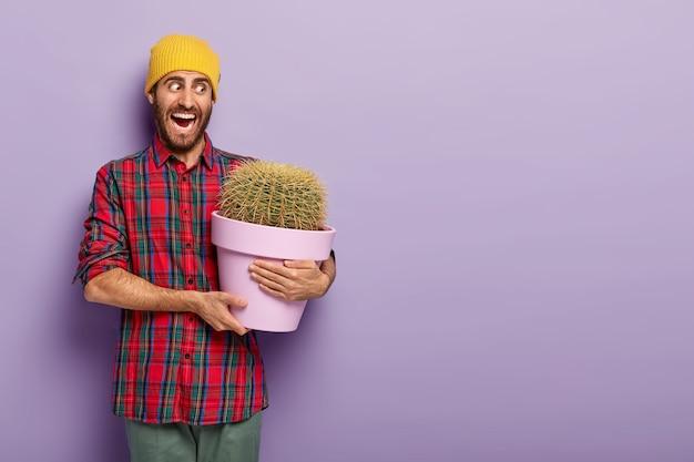 O florista masculino emocional abre amplamente a boca, segura um vaso de cactos espinhosos, usa chapéu amarelo e camisa xadrez, posa contra um fundo roxo, gosta de cultivar plantas de interior, sendo muito emocional