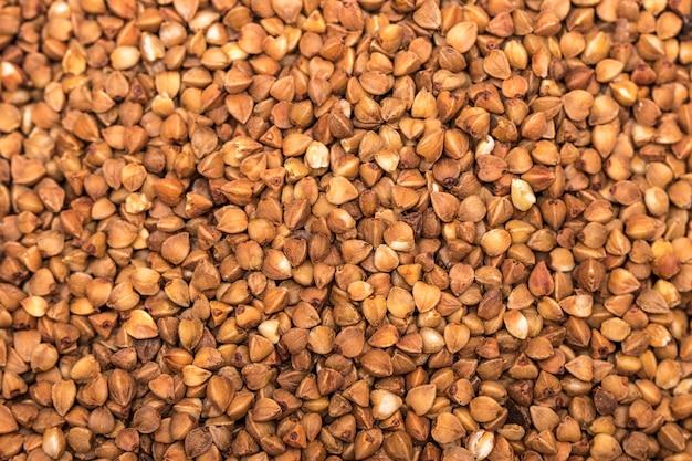 O fundo brilhante closeup de trigo sarraceno. fechar-se