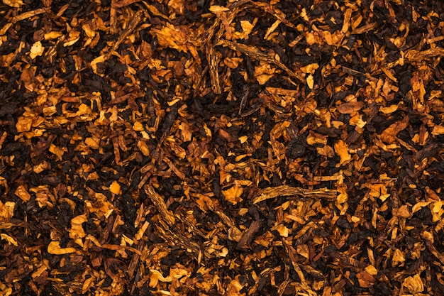 O fundo é de folhas de tabaco picadas