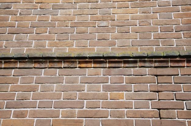 O fundo é uma velha parede de tijolos feita de tijolos de cerâmica vermelha.