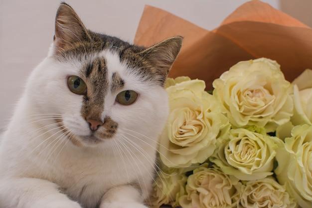 O gato está deitado perto de um buquê de rosas claras.