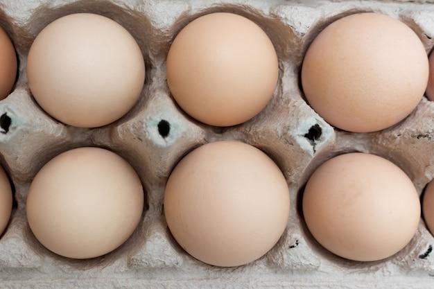 O grupo de galinha eggs na caixa de papel da bandeja do ovo. tema de páscoa