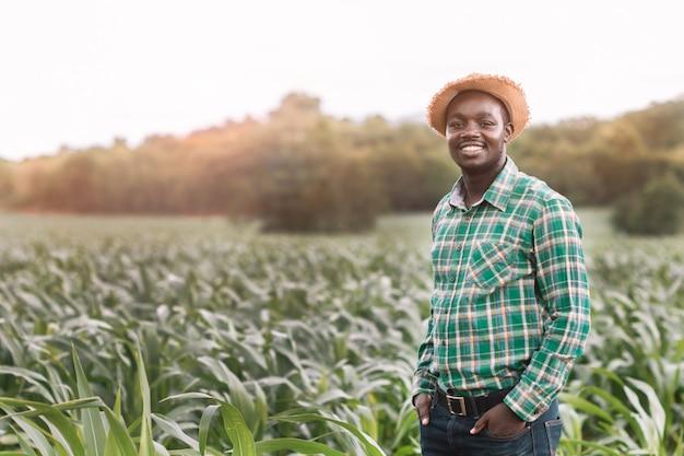 O homem africano do fazendeiro está na fazenda verde com feliz e sorri.
