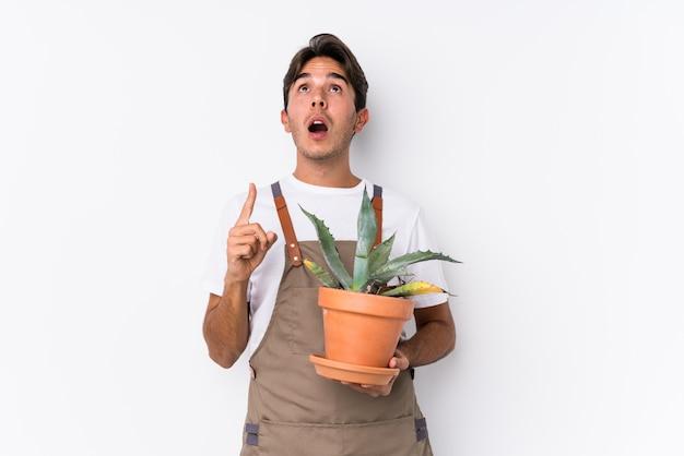 O homem caucasiano novo do jardineiro que guarda uma planta isolou apontar a cabeça com a boca aberta.