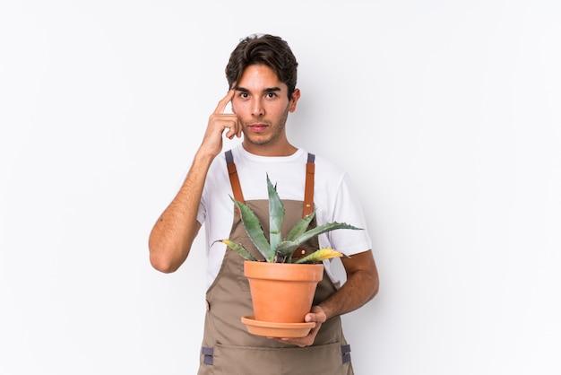 O homem caucasiano novo do jardineiro que guarda uma planta isolou apontar o templo com o dedo, pensando, focalizado em uma tarefa.