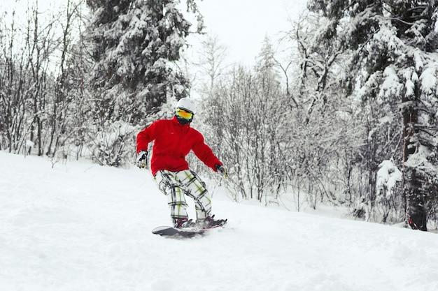O homem em casaco de esqui vermelho desce no snowboard ao longo da floresta