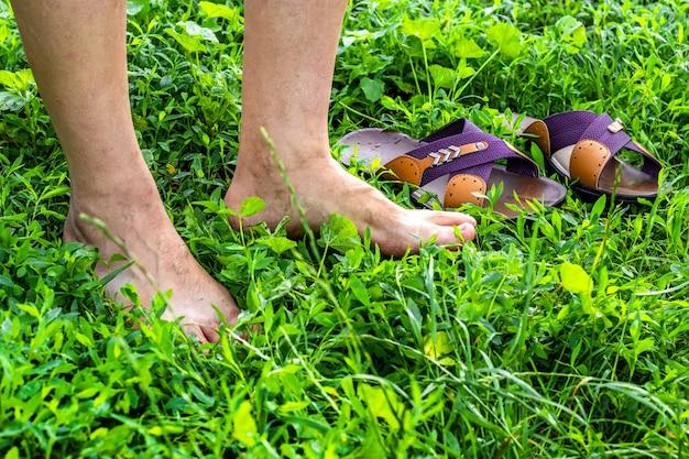 O homem largou os sapatos e caminhou na grama verde orvalhada