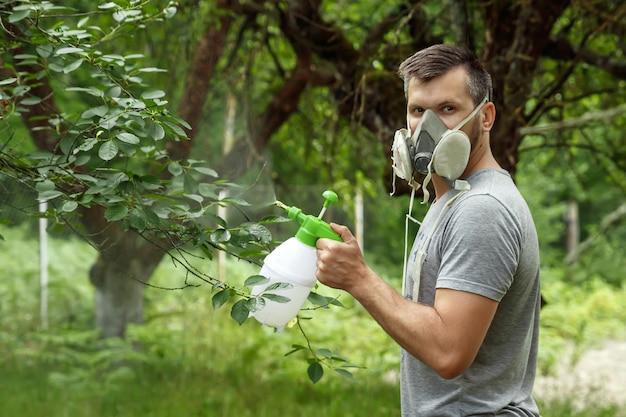 O homem no respirador polvilha as plantas