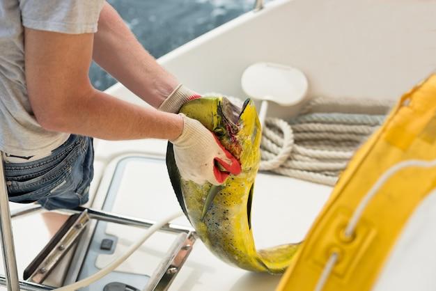 O homem segura um peixe fresco - mahi-mahi ou golfinho
